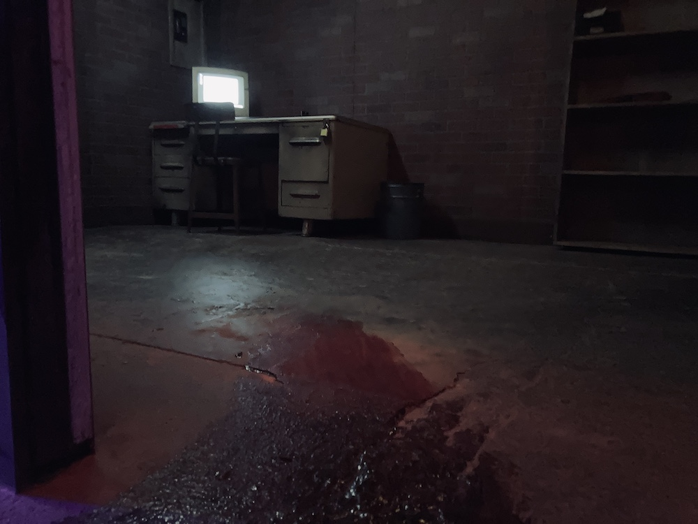 A streak of blood on the floor entering into a dark room with a computer desk.
