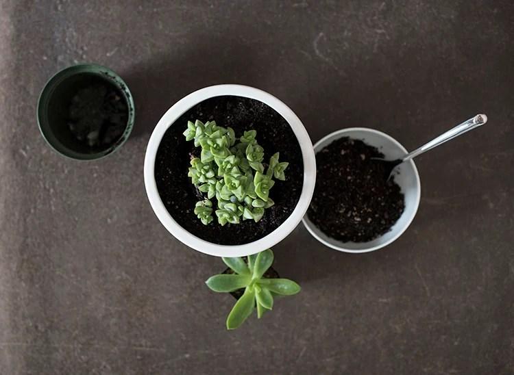 pedestal-planter-instructions
