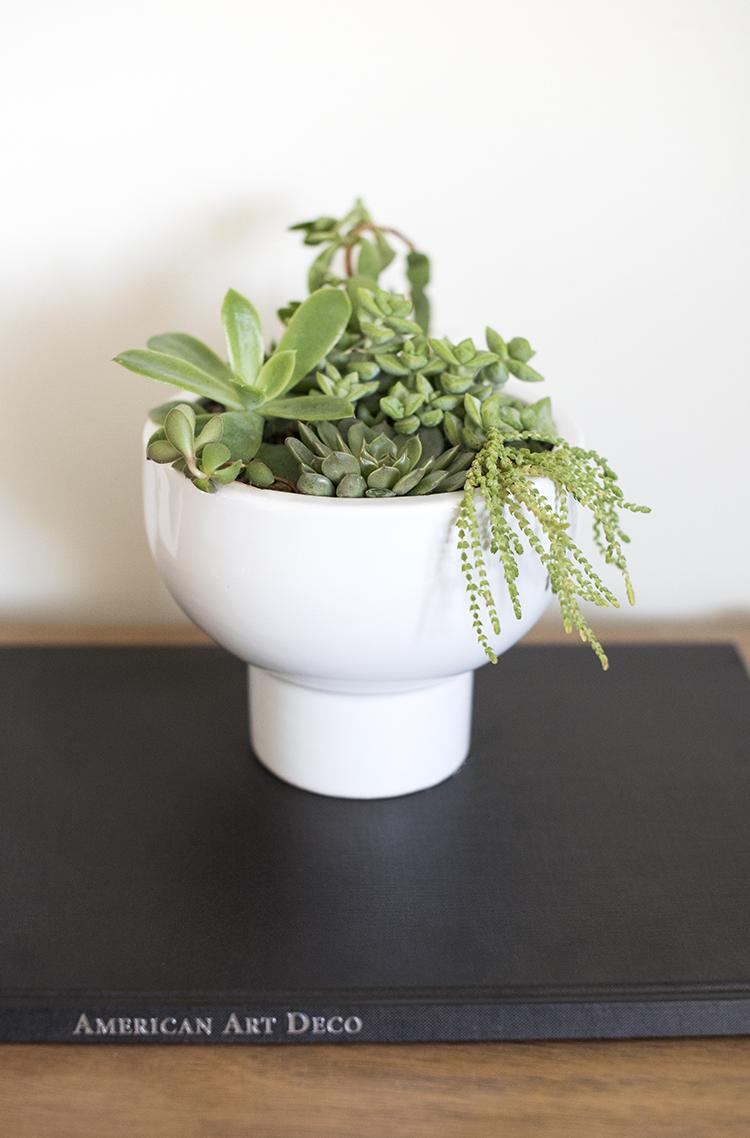 succulent-pedestal-planter