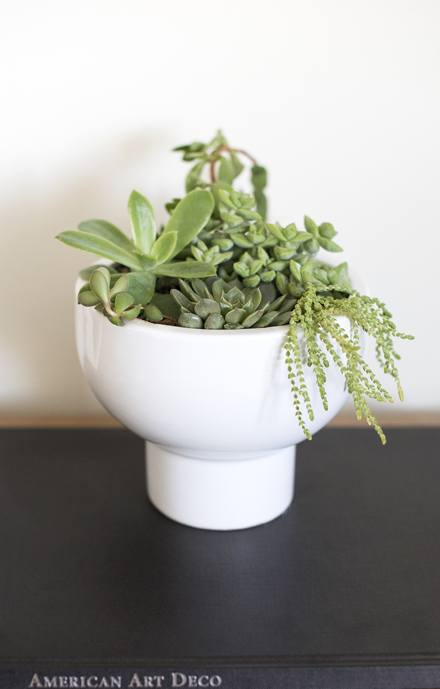 Amazon Finds : Planters for Spring - roomfortuesday.com