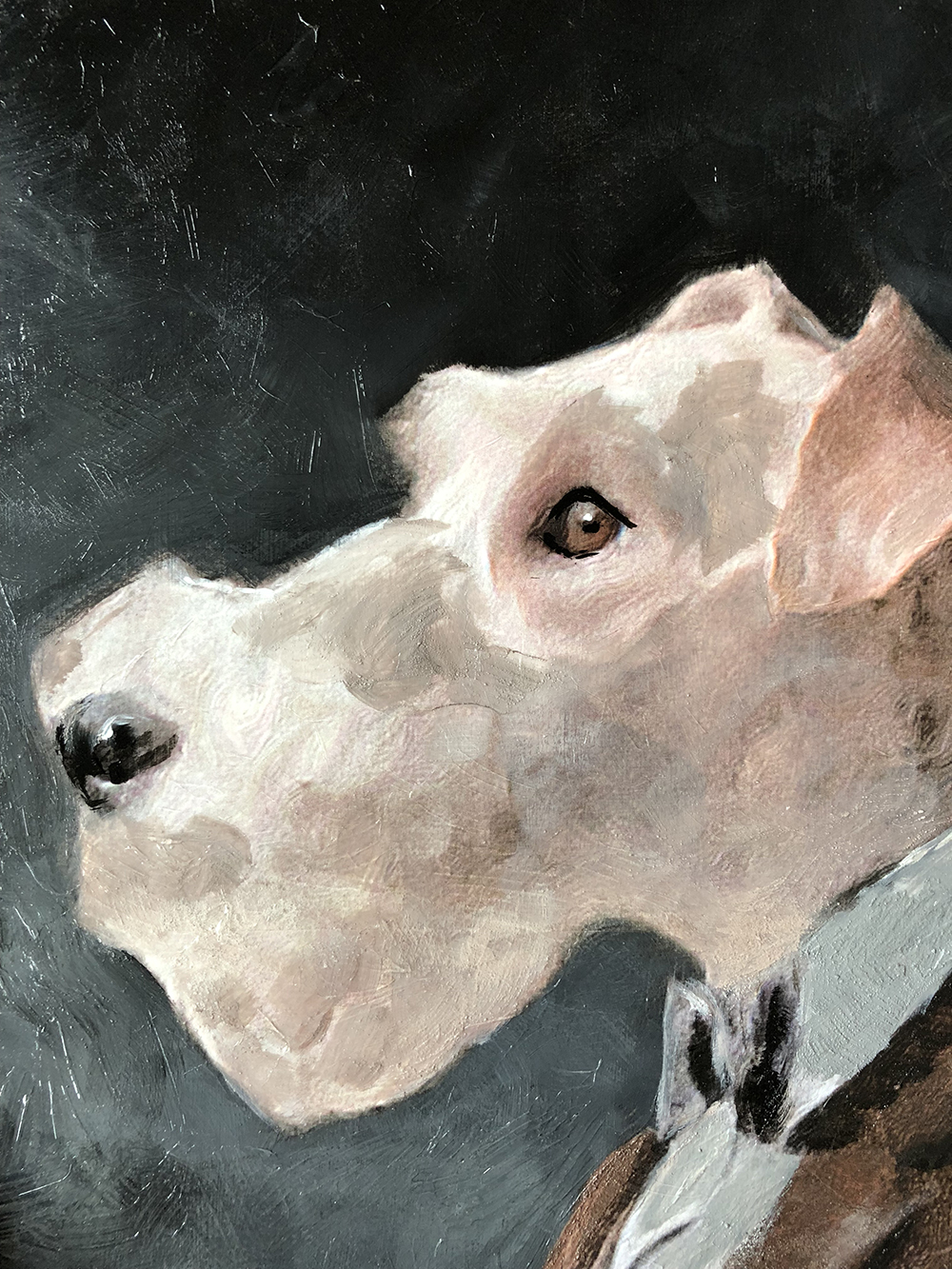 The Story Behind My Dog Portraits + A Peek at Crosby's - roomfortuesday.com