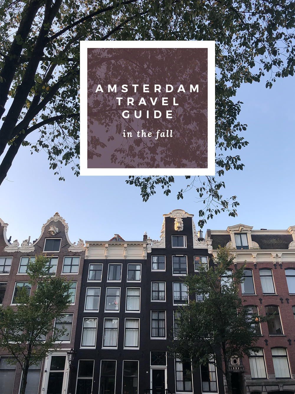 Amsterdam Travel Guide - roomfortuesday.com
