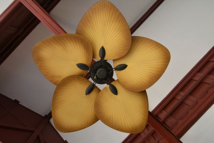 buy designer ceiling fan