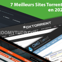 7 Meilleurs Sites Torrents En 2020
