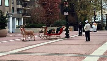 RIOC Christmas in Good Shepherd Plaza 2019