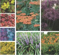 Meltwater drift materials - raised plantings