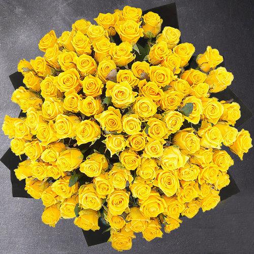 100 kollast roosi