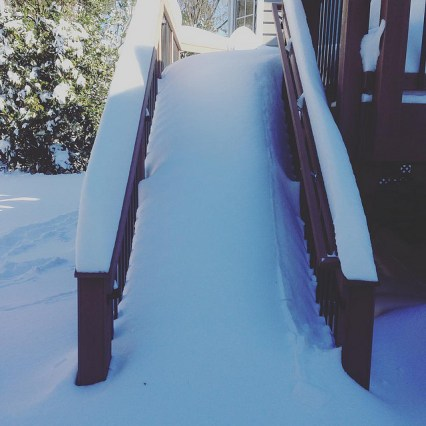 Back deck luge run