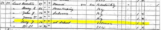 1870 Census Lucy Land