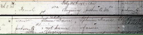 Nellie Davis Birth record