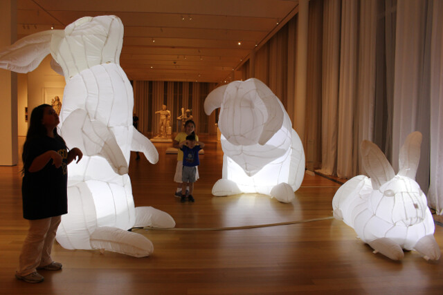 Special huge inflatable bunny week at the Art Museum. Free, of course.
