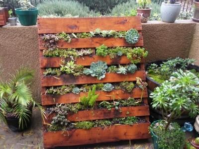 Roots Nursery Where Happy Plants Grow Roots Nursery