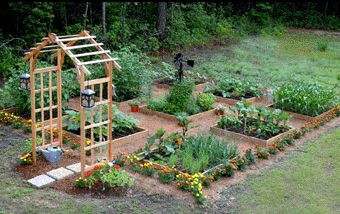 Square Foot Gardening Vegetables Just Got A Whole Lot Easier
