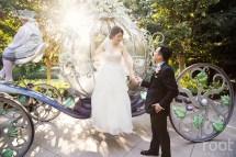 Aiko Ks Disneyland Wedding Part Two