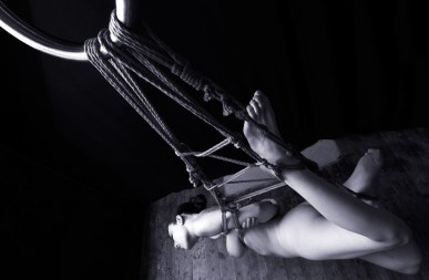 Gestalta suspension bondage
