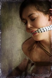 Bound and gagged in shibari rope bondage