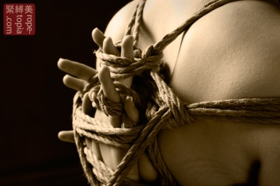 Adreena Winters shibari bondage session.