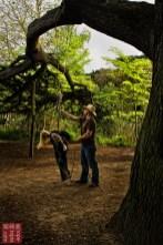 Outdoor shibari suspension from tree, kimono