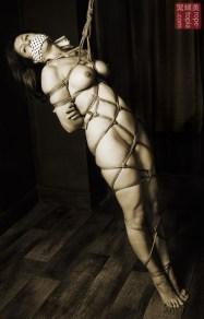 Lisa Smiths. Shibari bondage session.