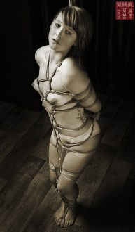 Full body shibari bondage.