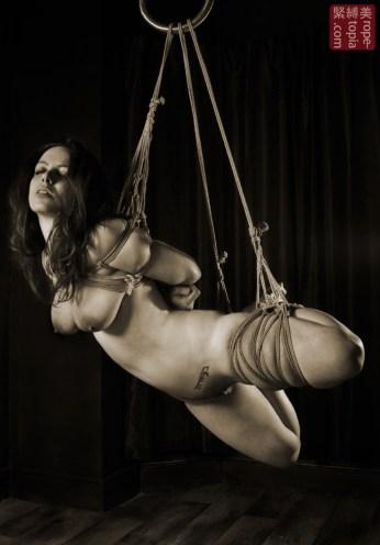 Beauvoir suspension bondage futomomo