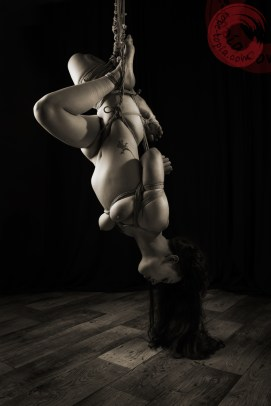 Inverted suspension shibari bondage