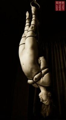 Shibari bondage inversion suspension