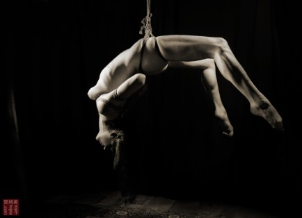 Suspended face up in shibari bondage