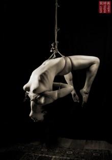 Torture suspension hip harness.