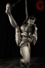 Torture suspension bondage