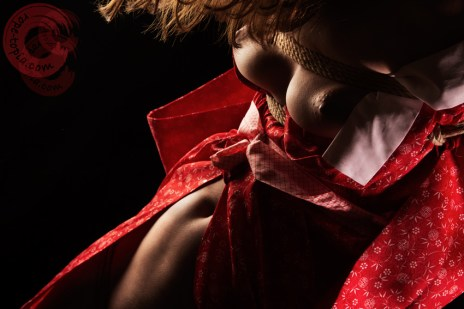 Shibari torture erotic exposure.
