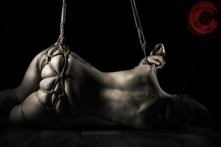 Shibari, bondage, suspension, partial, bum, bottom, tied
