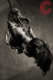 Shibari suspension bondage inversion
