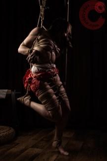Shibari partial suspension, leg bondage.
