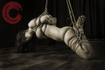 Beauvoir Fetish Shibari 緊縛 縛り 拘束 縄 semi suspension