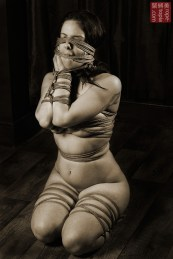 Beauvoir Fetish Shibari 緊縛 縛り 拘束 縄 Bound hands in front, rope gag, rope blindfold