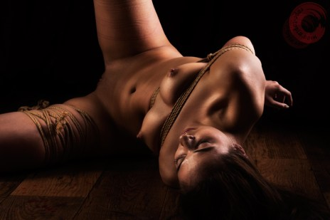 Contemplation shibari