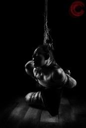 Sophia Shibari suffering beautifully in tight rope bondage.