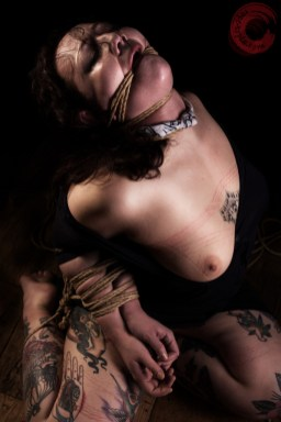 Sophia Shibari so expressive, rope gag, neck rope and hard strappado.