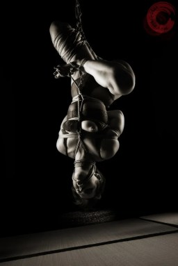 Hard futomomo shibari bondage inverted suspension.