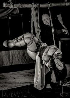 Wet Tenugui Flogging in intense inverted shibari suspension in Jamaica