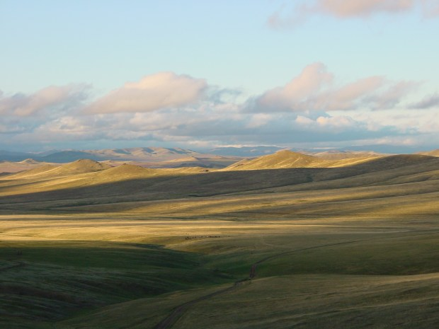 Mongolian Steppes by Linh Vien Thai