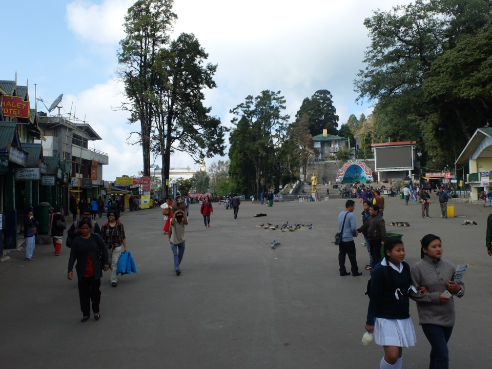 Darjeeling-11