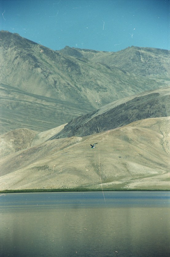 Tadjikistan argentique-25