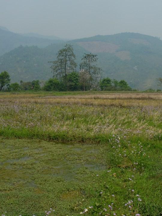 J8 Laos-2