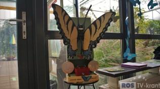 Vlindertuin (19)