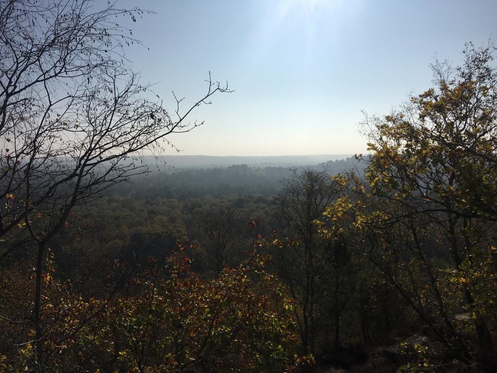 Un paysage