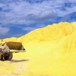 Sulphur Still a Classic Treatment for Rosacea (2012 AAD San Diego)
