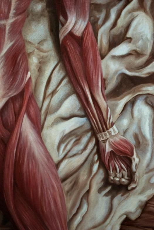 Katy Wiedemann_Rebirth of Scientific Model Detail Arm