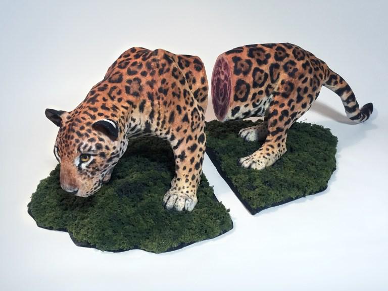 habitat-fragmentation-by-emily-schnall-illustration-and-sculpting